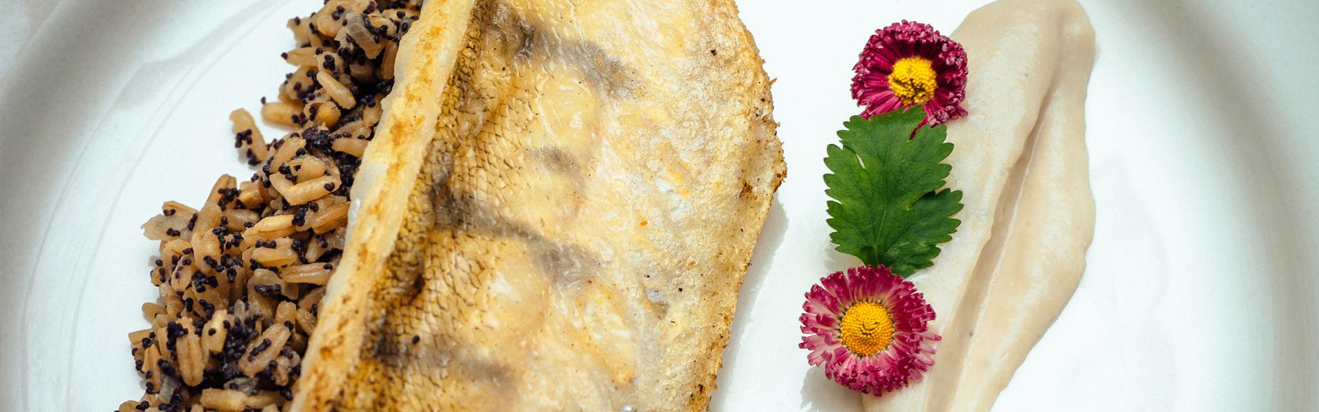Filet z sandacza w sosie orzechowym