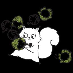 Wiewiórka z orzechami laskowymi