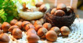 Orzechy laskowe – kalorie i właściwości