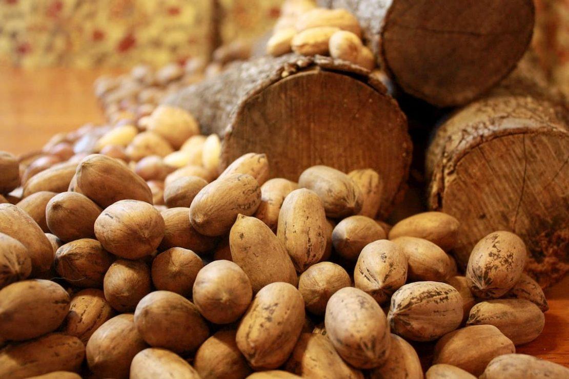 Orzechy pekan – wszystko, co warto o nich wiedzieć